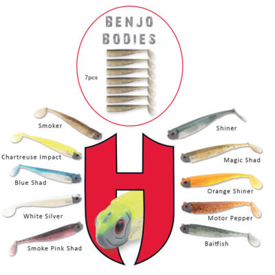 Benjo Bodies